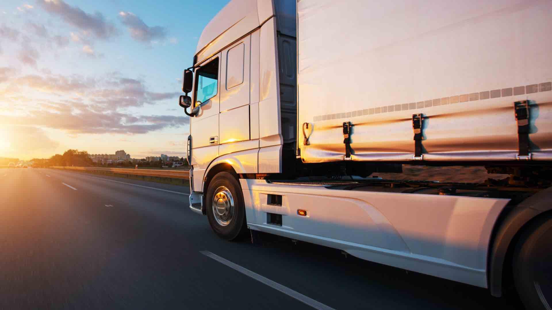FIAP Validita delle autorizzazioni internazionali al trasporto di merci. Anno 2019.