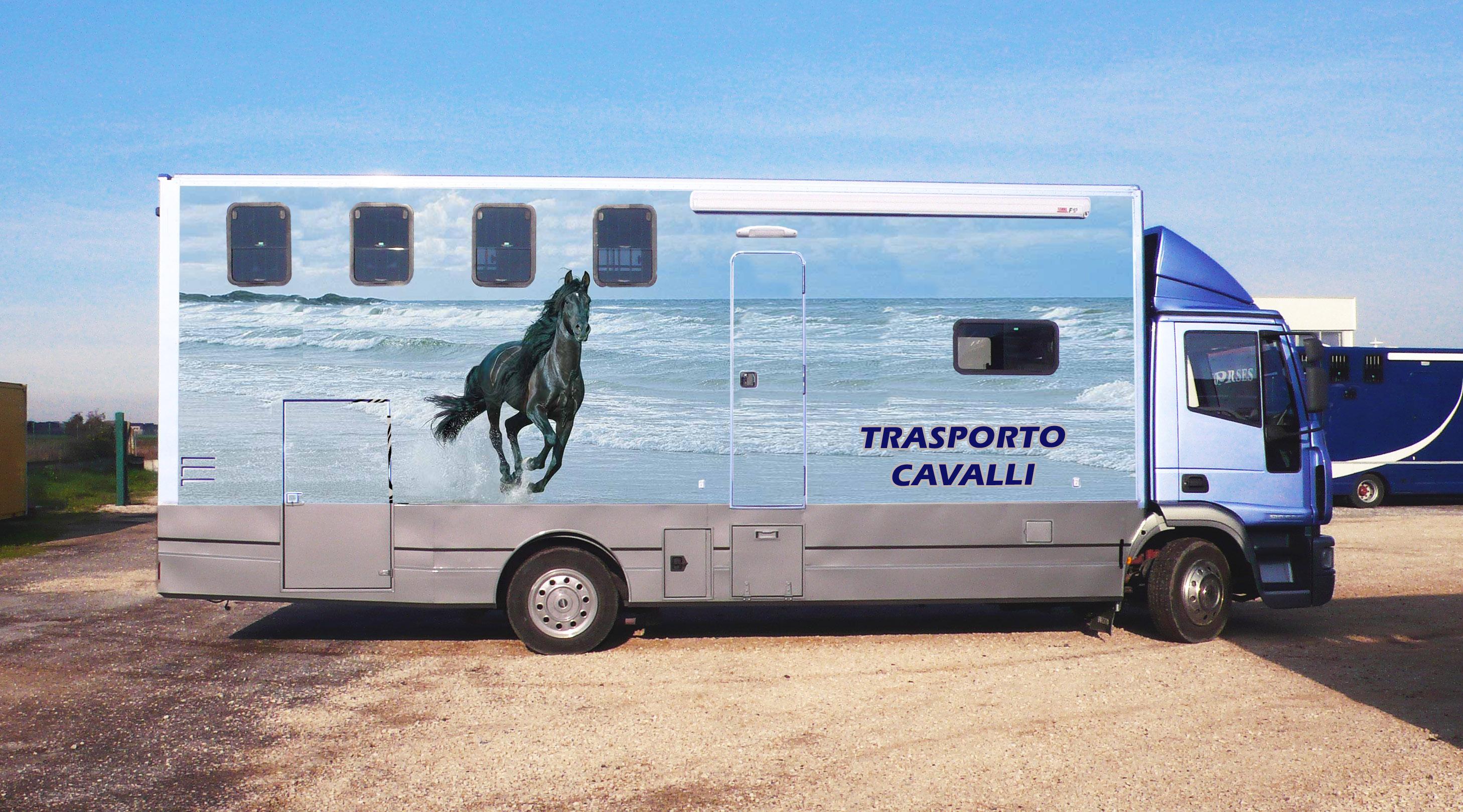 Van Cavalli 1